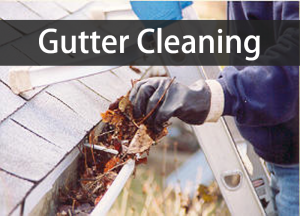 gutter cleaning pic