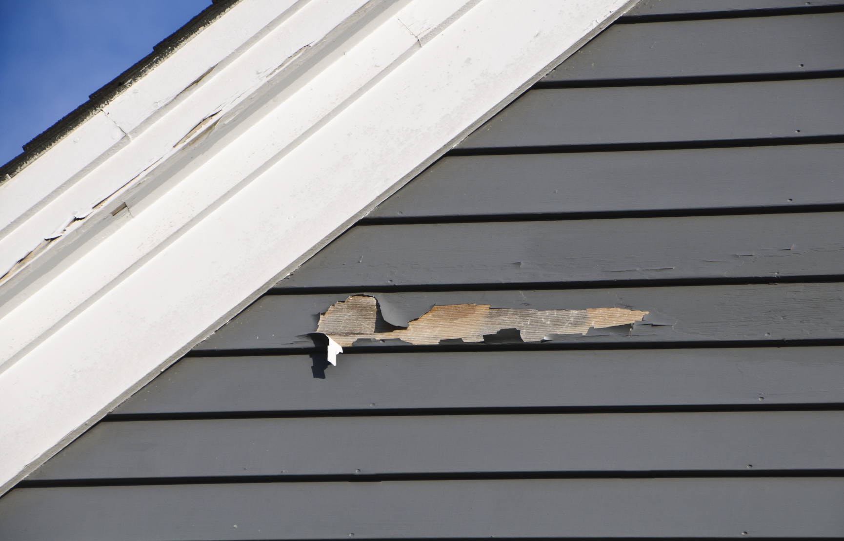 Peeling on cedar siding probably due to either poor paint application or a moisture behind the siding this unsightly peeling and cracking will have to be scraped, sanded, primed and repainted.